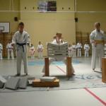turniej 2013 237_JPG